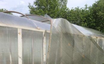 Ураган оставил деревни Можайского района без света