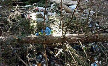 Долину славы превратили в Долину мусора