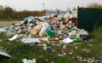 Компания по вывозу мусора устроила стихийную свалку в Можайске