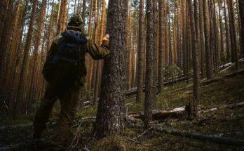 ОМВД России по Можайскому г.о. напоминает о правилах перед походом в лес