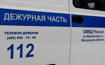 Полиция Можайска задержала подозреваемого в серии краж из гаражей