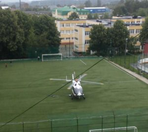 Девочка из Москвы пострадала от удара лошади в Можайском районе