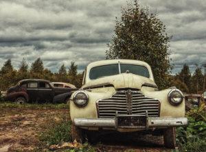 Коллекционер свёз в Можайский район больше сотни ретро авто