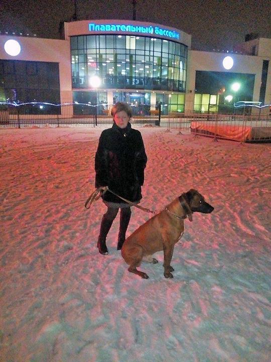 В Можайске суд выгоняет из квартиры собаку
